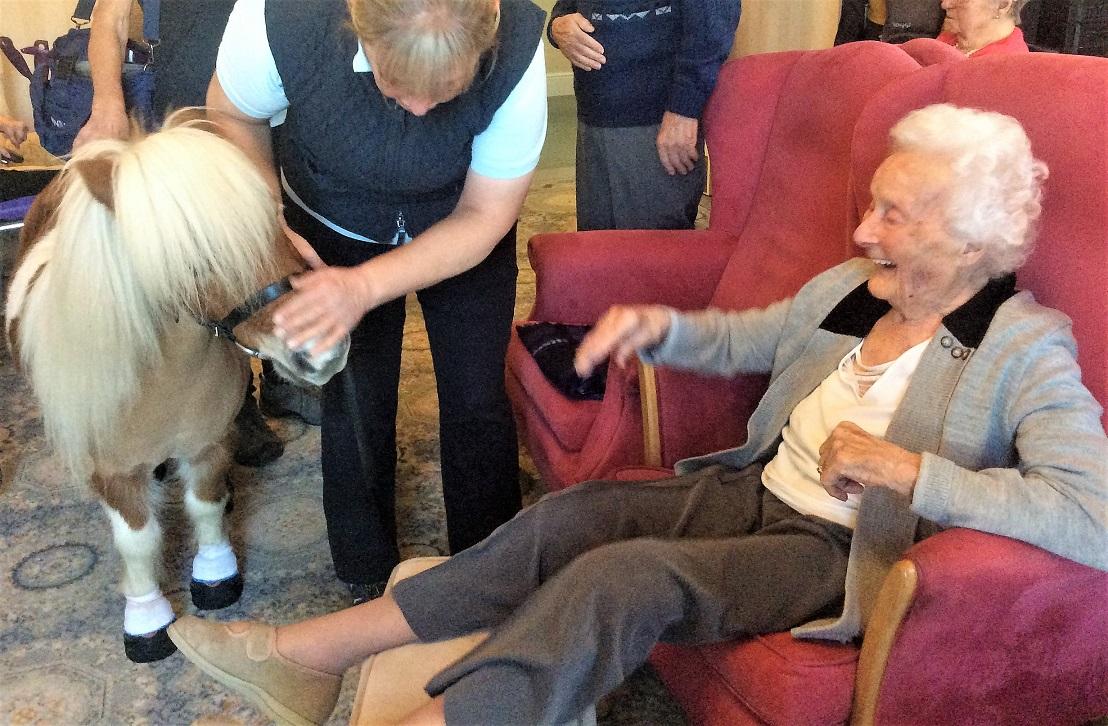 Resident Viv Burgh loved meeting Rommel the pony