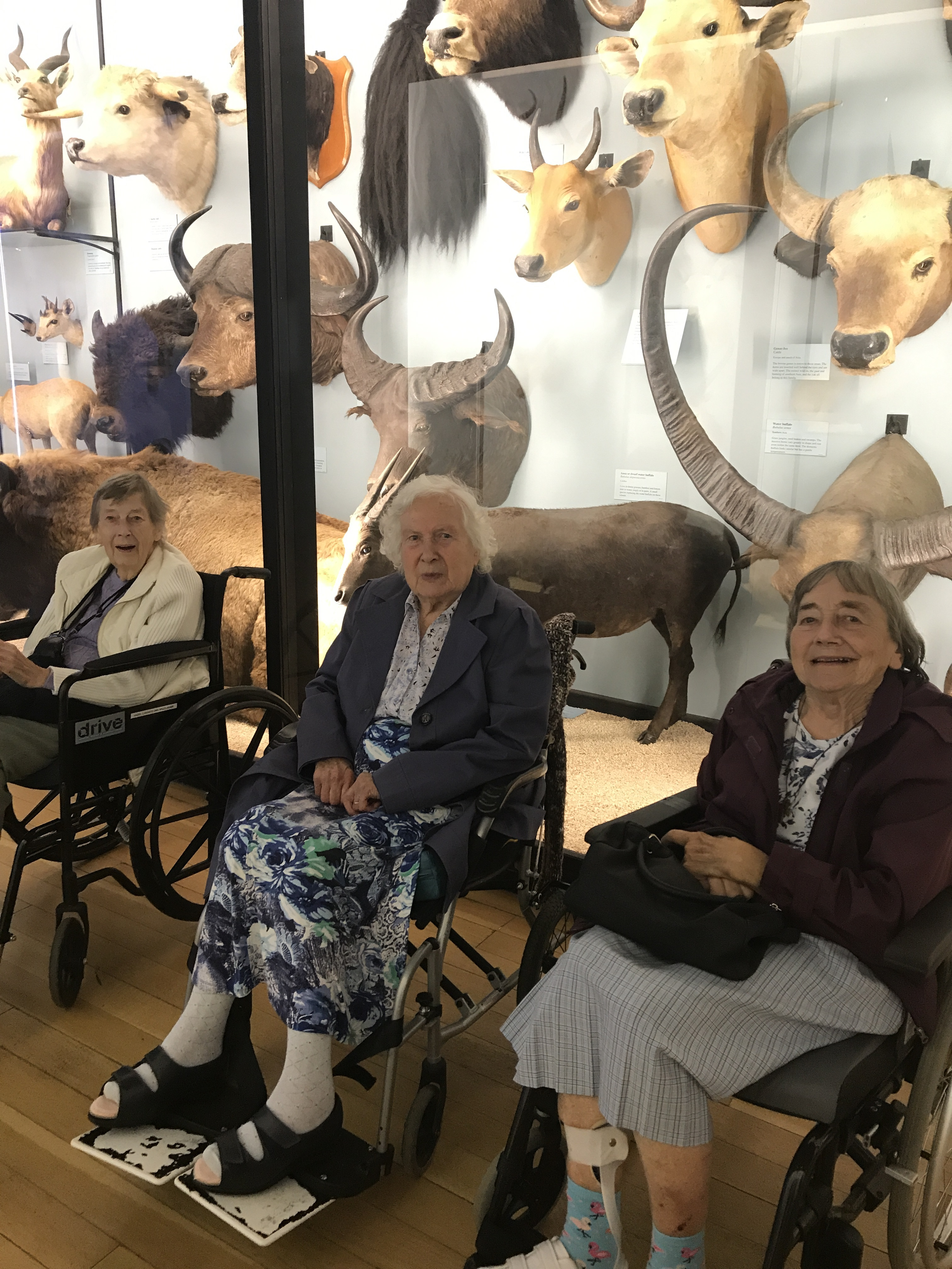 The ladies at Tring Natural History Museum