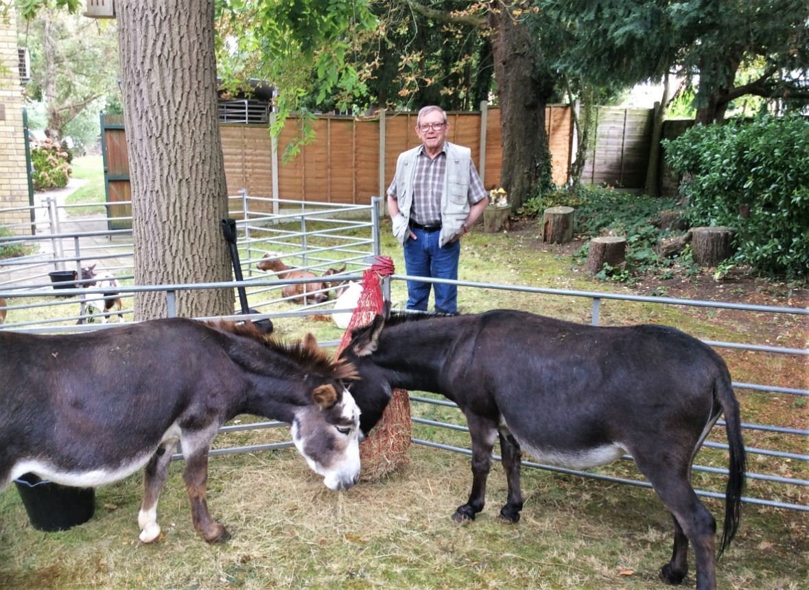 Uplands Care Home in Streatham has a visit from Miller's Ark Farm