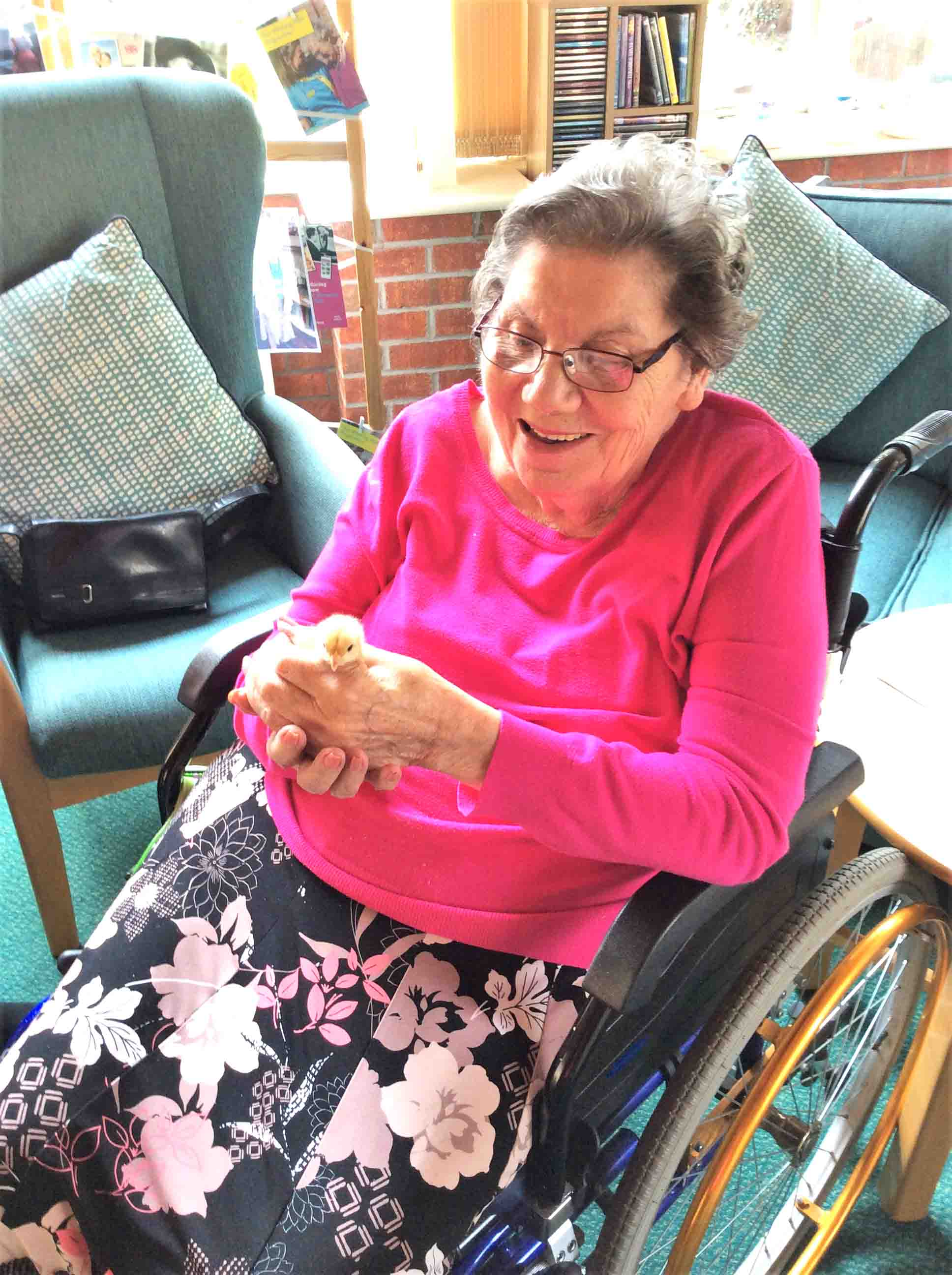 residents at The Cedars Care Home in Bourne hatching chicks for Easter