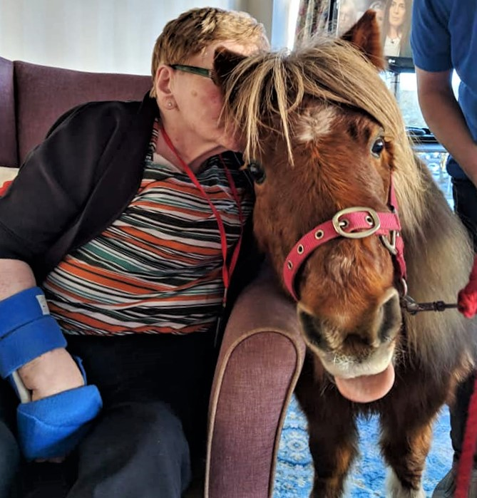 Smiles all round with the Lollipop Ponies at Broadway Halls Care Home