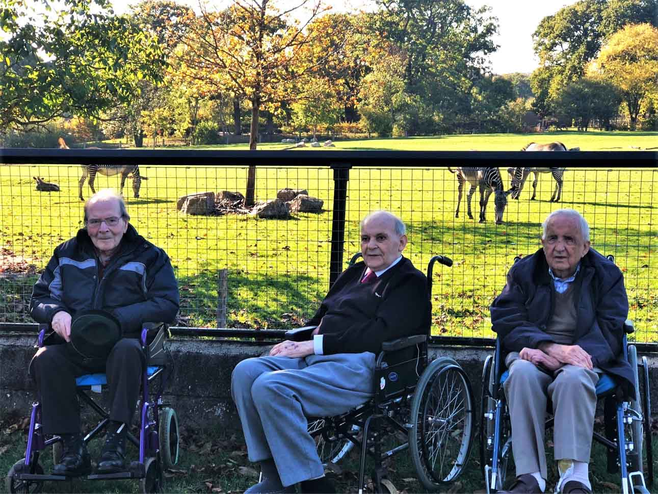 Flowerdown Care Home's wild day out to Marwell Zoo