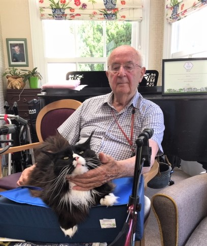 Ross Court Care Home, Herefordshire-That's one happy cat! Resident Ivor stroking his new friend