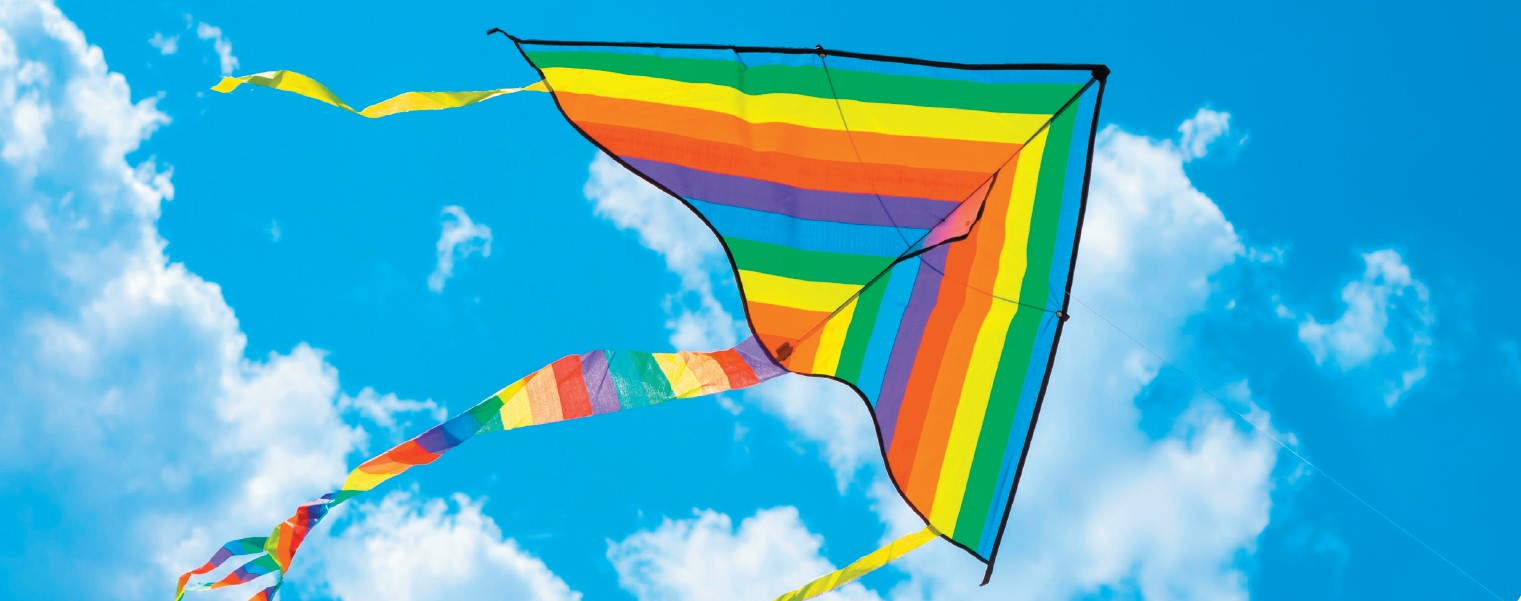 Kite flying and making