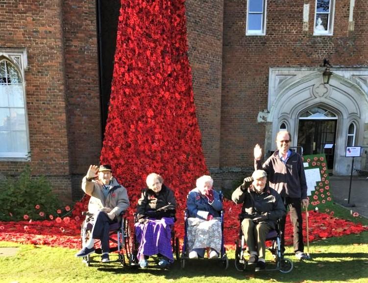 Highfield Care Home visit Hertford Castle's stunning poppy cascade