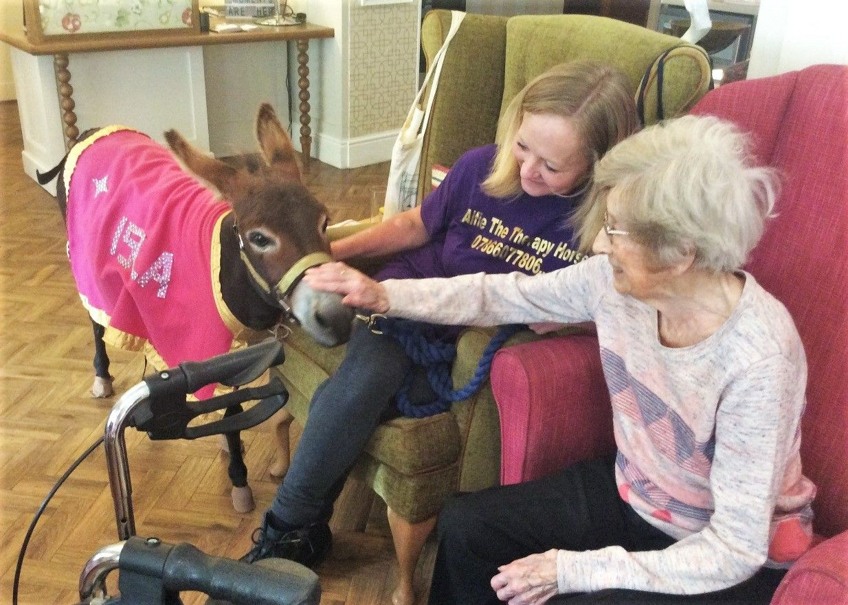 Residents at The Lawns care home in Oadby enjoy a special visit from a therapy donkey