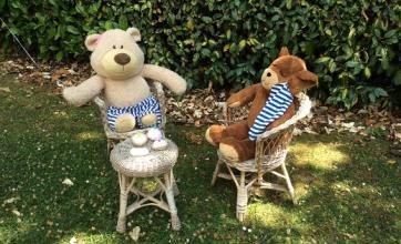 Teddy Bears' picnic at The Cedars