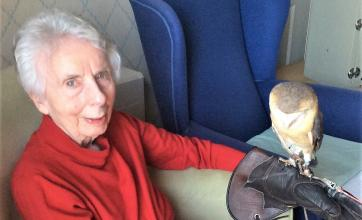 Avery House Care Home, Peterborough- Barbara holding Jamie the dark breasted Barn Owl