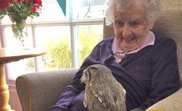 Ross Court Care Home in Herefordshire made a wish come true for resident who wanted to meet some birds of prey