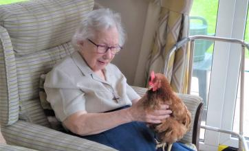 Cossins House Care Home, Surrey-Resident Sister Mary Agnes loves our new chickens