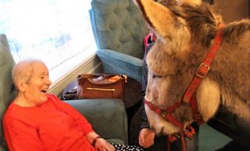 Ivybank House Care Home, Bath-Resident Val was delighted to meet Dermot the donkey as we reminisced about our childhood holidays at the seaside