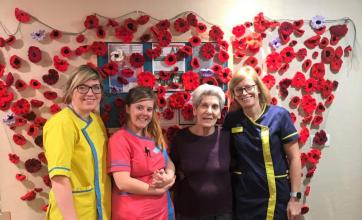 Scarborough Hall Care Home in North Yorkshire knit poppies to help create a remembrance display