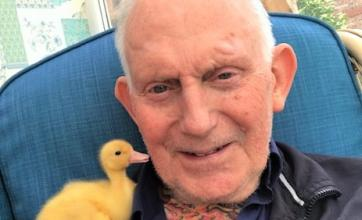 Scarborough Hall Care Home, North Yorkshire-Resident Percival making a new fluffy friend!