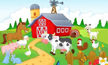 All the fun of the farm!