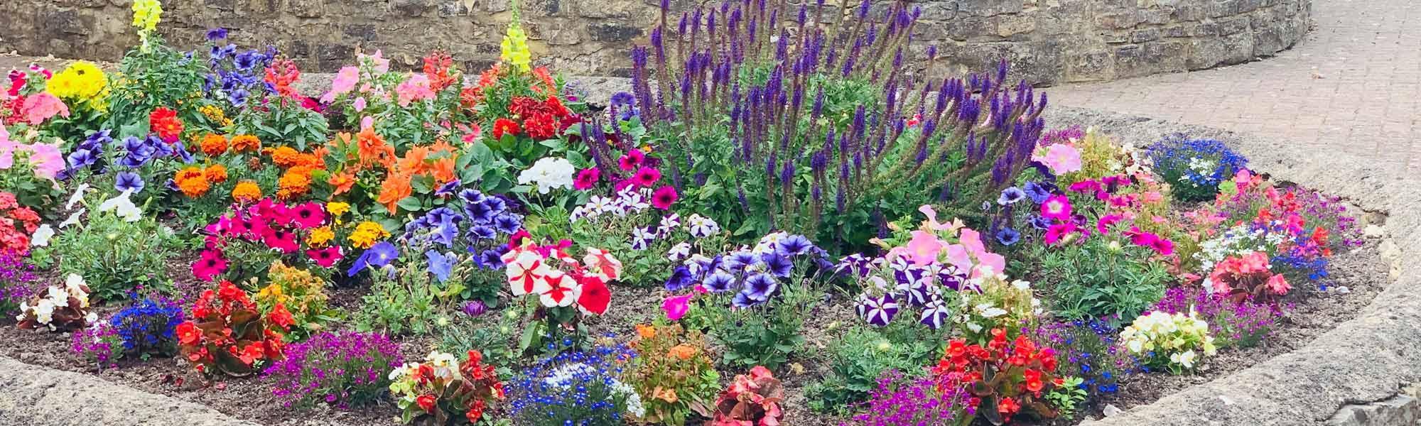 Hempton Field lovely gardens