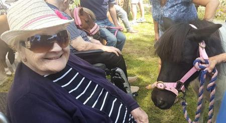 Broadway Halls Care Home, Dudley-Resident Lily meeting Elsa the miniature pony
