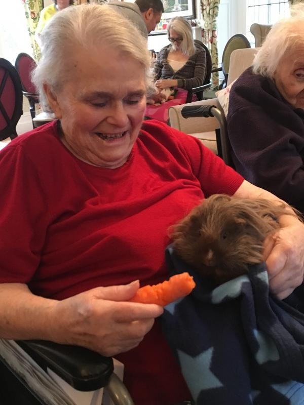 Resident Ann feeding the furry guinea pig