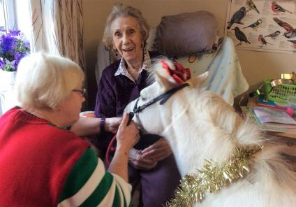 Leeming Bar Grange Care Home, North Yorkshire. A festive visit from Blondie the Miniature pony on 19th December. The pony went to visit Eileen in her bedroom!