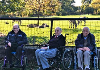 George, Geoffrey and Rodney enjoying their day - admiring the zebra!