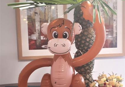 Meyrick Rise Care Home, Bournemouth-Enjoying lots of monkey business at our 'Showtime' event!