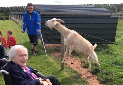 Ross Court Care Home, Herefordshire-Resident Barbara thought this goat was hilarious!
