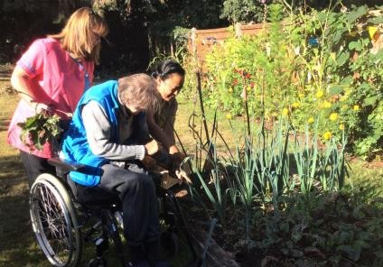 The Berkshire Care Home, Wokingham-Picking the beetroots and leeks for our harvest lunch