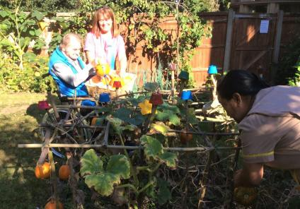 The Berkshire Care Home, Wokingham-Resident Donald and team members Julia and Dhan picking pumpkins in our garden