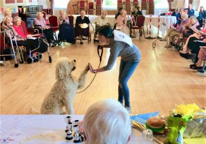 The Granby Care Home, Harrogate-What a good boy! Jasper the Labradoodle high fives his owner Zoe