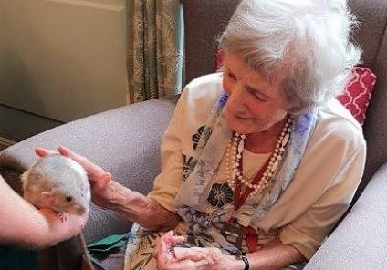 Sybil admires the creatures