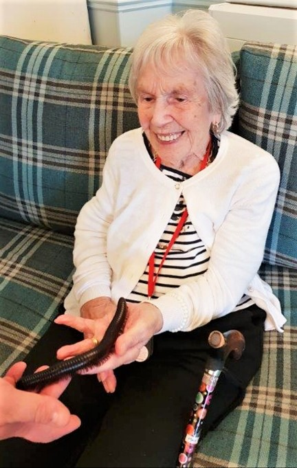 Ivybank House Care Home gets hands-on with nature with a visit from Zoolab